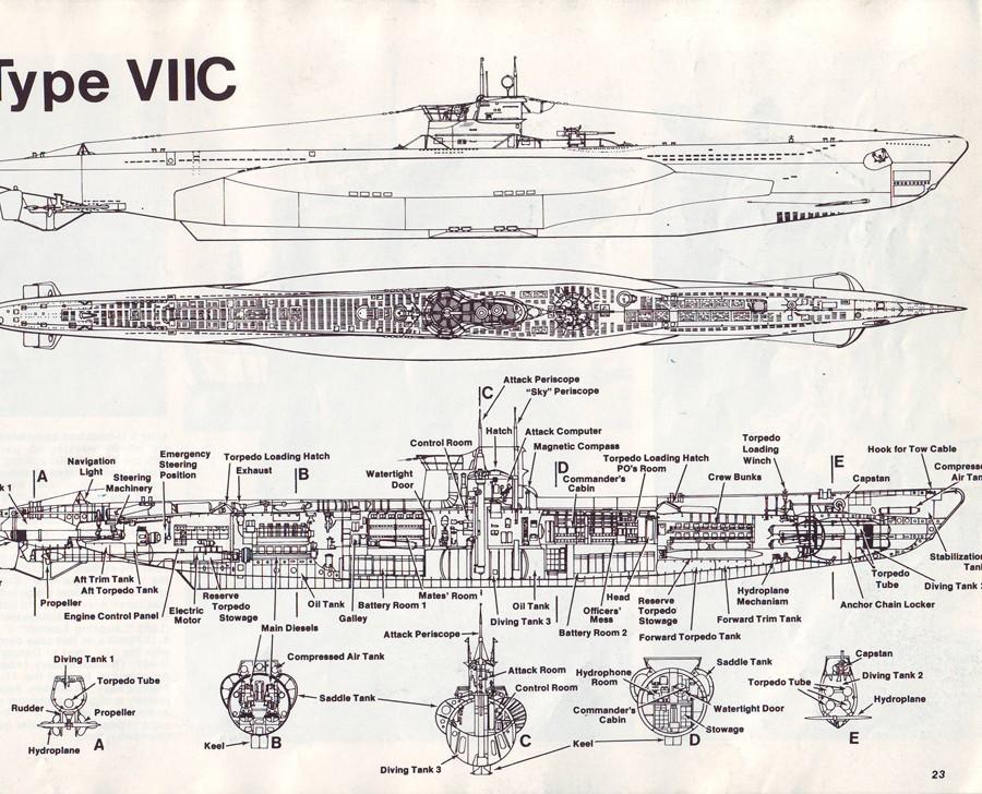 VIICtype