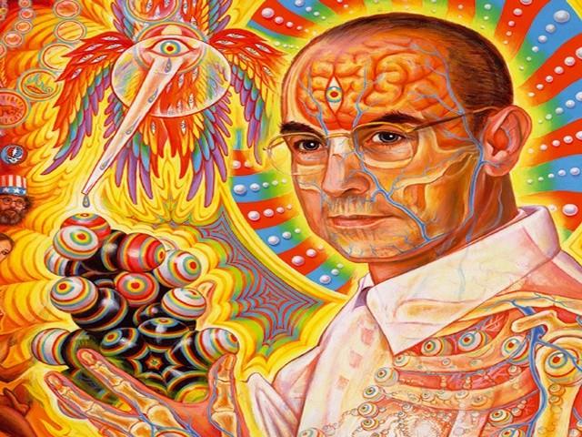 hallucinogens-narcolikvidator