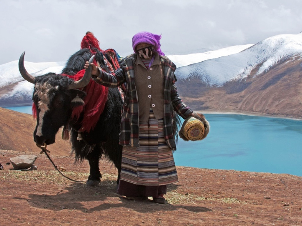 Man-and-Yak-Tibet