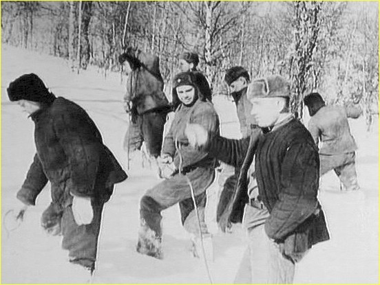 поисковая группа дятлова. Снежный человек перевал Дятлова