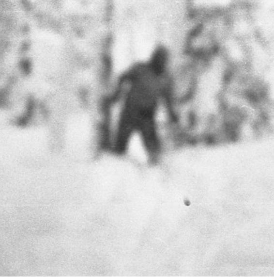 йети перевал дятлова. Снежный человек перевал Дятлова