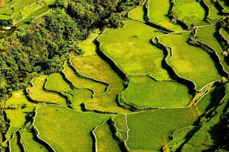 Рисовые террасы Ифугао, Филиппины. Тайны Азии