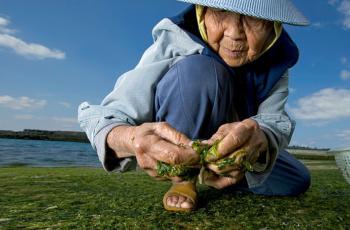 Секреты долголетия в употреблении воды. Восточная медицина