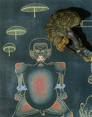 Шаманские грибы были обнаружены изображенными на старинных тханках.